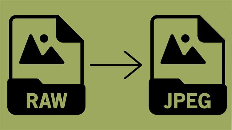 Convert Your RAW Images to JPEG Files